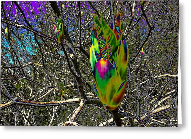 Rainbow Explosion Greeting Card by JoAnn SkyWatcher