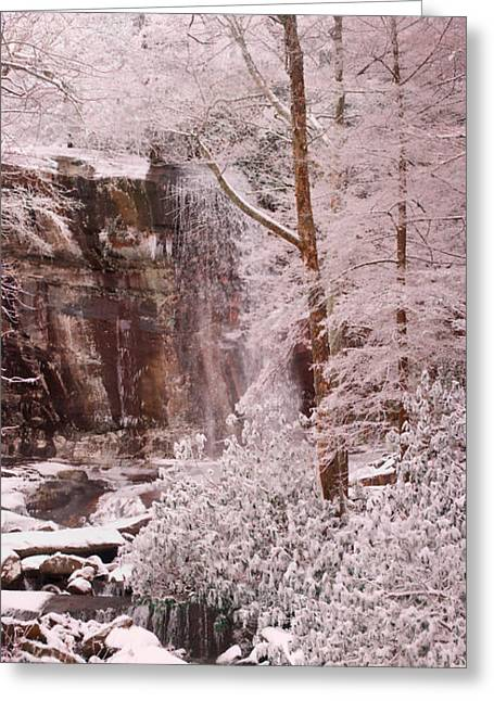Rainbow Falls Smoky Mountain National Park -- Painted Photo. Greeting Card by Christopher Gaston