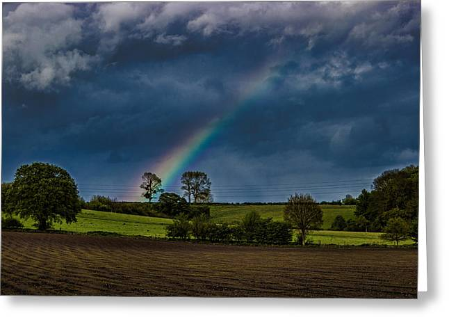 Rainbow Fields Greeting Card by Martin Newman