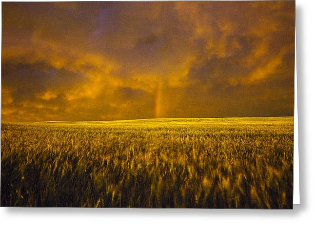 Eerie Greeting Cards - Rainbow in the Storm Greeting Card by David M Porter