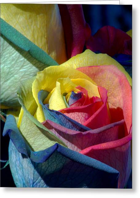 Gift Of Love Greeting Cards - Rainbow of Love Greeting Card by Karen Musick