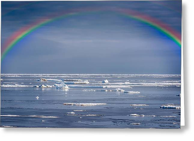 Double Rainbow Digital Art Greeting Cards - Rainbow over a frozen ocean Greeting Card by Alec Hickman