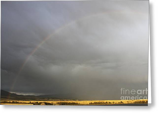 Canyon Ferry Lake Greeting Cards - Rainbow over Canyon Ferry Lake Greeting Card by Carolyn Brown