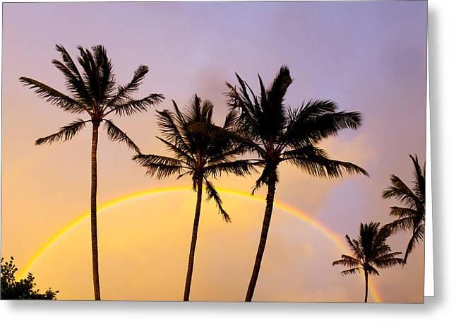 Warm Light Greeting Cards - Rainbow Palms Greeting Card by Sean Davey