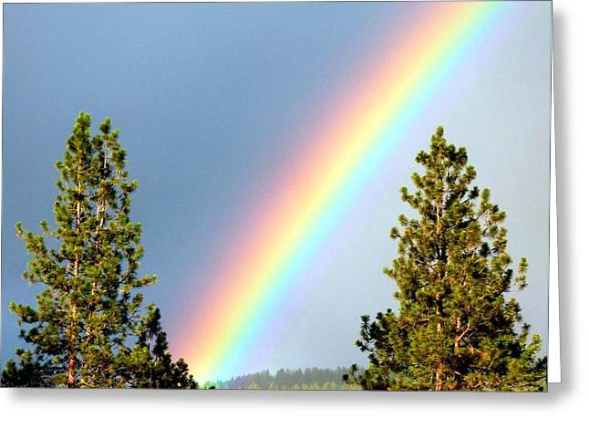 Covenant Greeting Cards - Rainbow Radiance Greeting Card by Will Borden