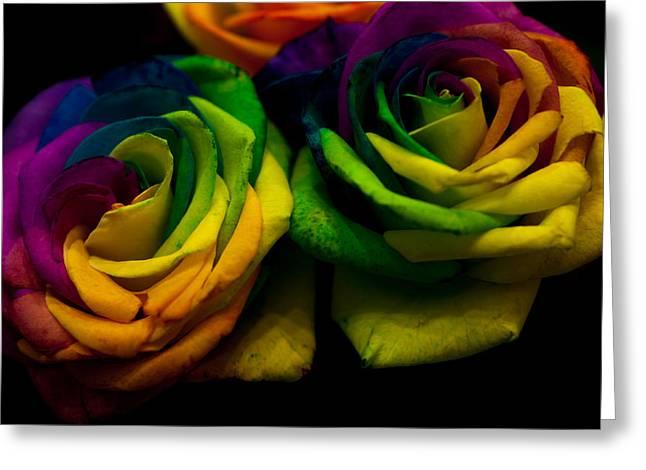 Rainbow Roses Greeting Card by Jenny Rainbow