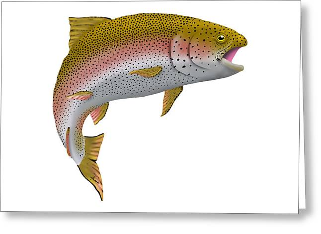 Rainbow Trout Digital Art Greeting Cards - Rainbow Trout 1 Greeting Card by Agustin Goba