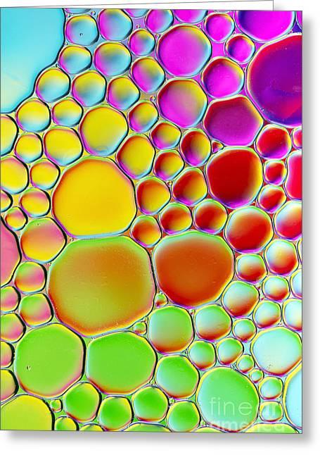 Rainbowtastic Greeting Card by Tim Gainey