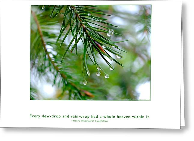Metaphysics Greeting Cards - Raindrop Has Whole Heaven Greeting Card by Kristen Fox