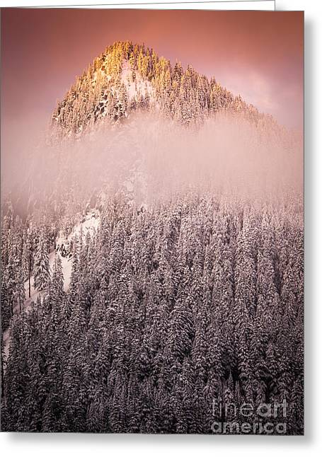 Winter Travel Greeting Cards - Rainier Winter Scene Greeting Card by Inge Johnsson