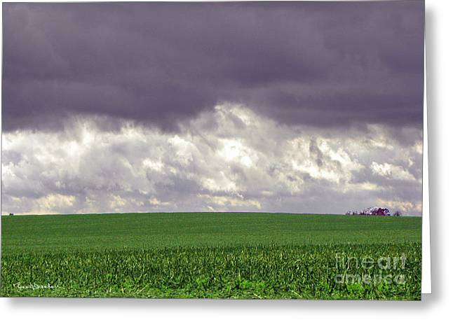 Field. Cloud Greeting Cards - Rainmaker Greeting Card by Renee Bearden