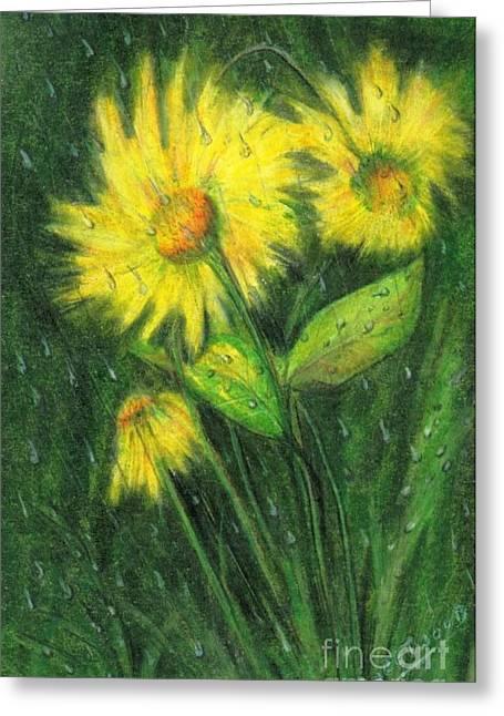 Daisy Drawings Greeting Cards - Rainy Daisy Greeting Card by Carol Sweetwood