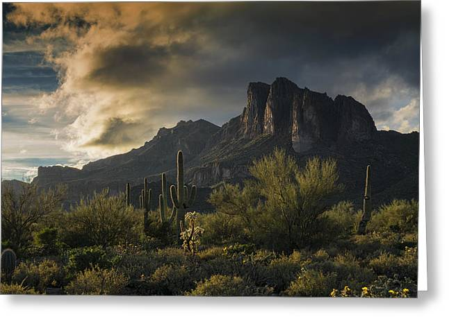 Rainy Day In The Superstitions  Greeting Card by Saija Lehtonen