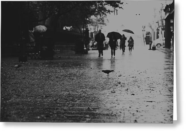 Withdrawal Greeting Cards - Rainy day Greeting Card by Zina Zinchik