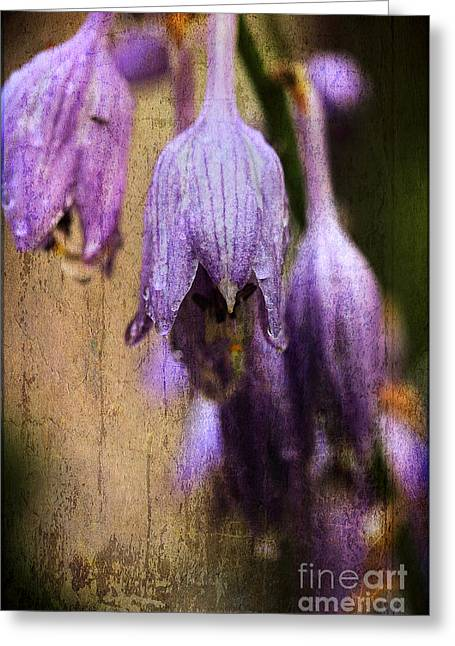 Hostas Greeting Cards - Rainy Summer Afternoon Greeting Card by Michael Eingle