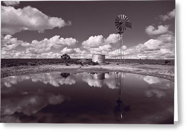 Scrub Greeting Cards - Ranch Pond New Mexico Greeting Card by Steve Gadomski
