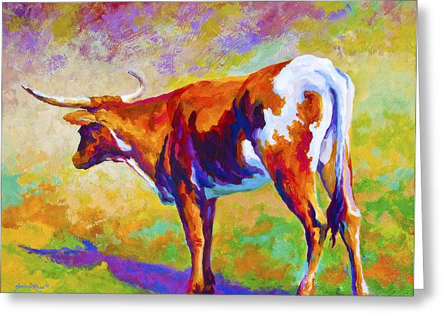Texas Longhorn Cow Greeting Cards - Range Rover II - Texas Longhorn Greeting Card by Marion Rose