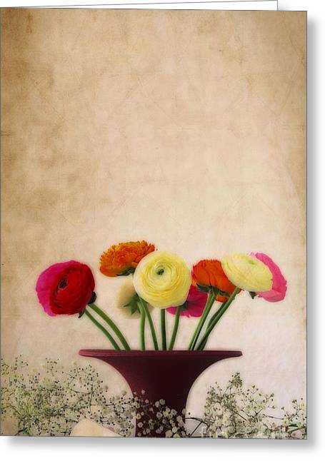 Flower Design Greeting Cards - Ranunculus Color Greeting Card by SK Pfphotography