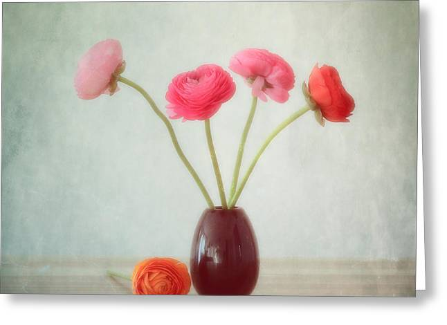 Flower Design Greeting Cards - Ranunculus Pastell Greeting Card by SK Pfphotography