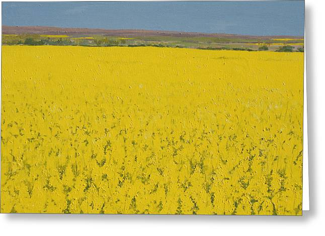 In Bloom Greeting Cards - Rape Field Greeting Card by Alan Byrne