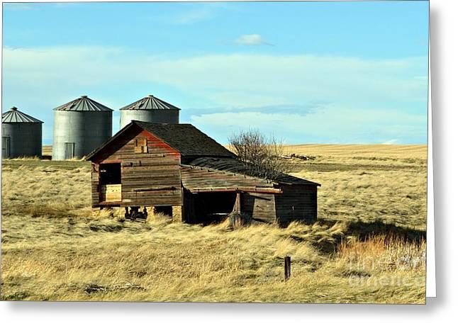 Rapelje Farm 2  Greeting Card by Chalet Roome-Rigdon