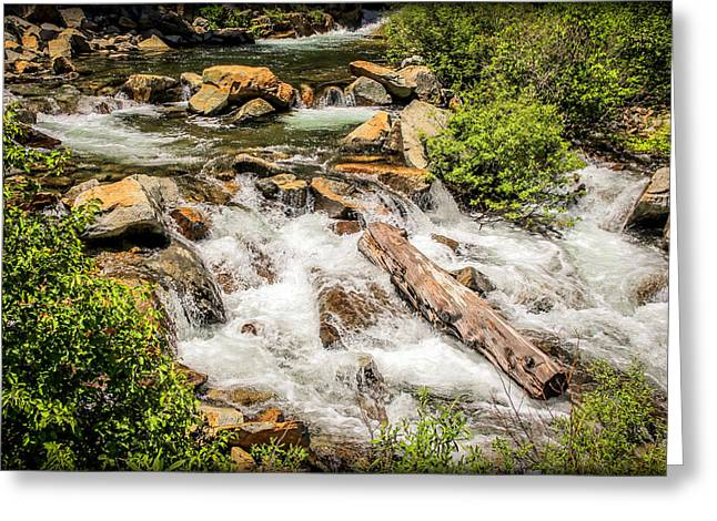 Randy Greeting Cards - Rapid River Greeting Card by Randy Wehner Photography