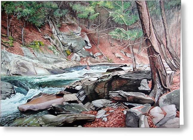 Tennessee River Paintings Greeting Cards - Rapid Water Greeting Card by Jennifer Oakley-Delaplante