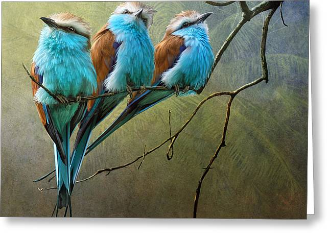 Raquet Tailed Rollers Greeting Card by R christopher Vest