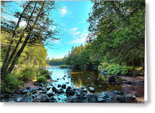 Raquette River Greeting Card by David Patterson