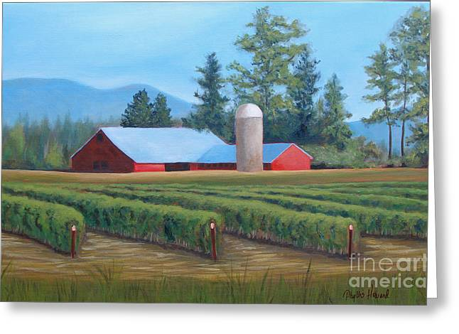 Red Roofed Barn Mixed Media Greeting Cards - Raspberry Fields Forever Greeting Card by Phyllis Howard