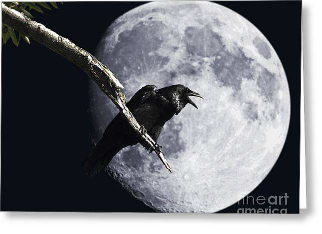Raven Greeting Cards - Raven Barking at the Moon Greeting Card by Wingsdomain Art and Photography