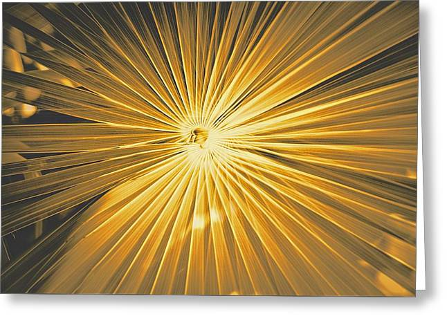 Color Enhanced Greeting Cards - Rays And Shine Greeting Card by David Coleman