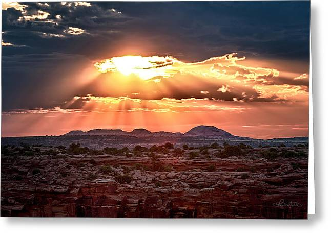 Warm Tones Greeting Cards - Rays of Light Greeting Card by Renee Sullivan