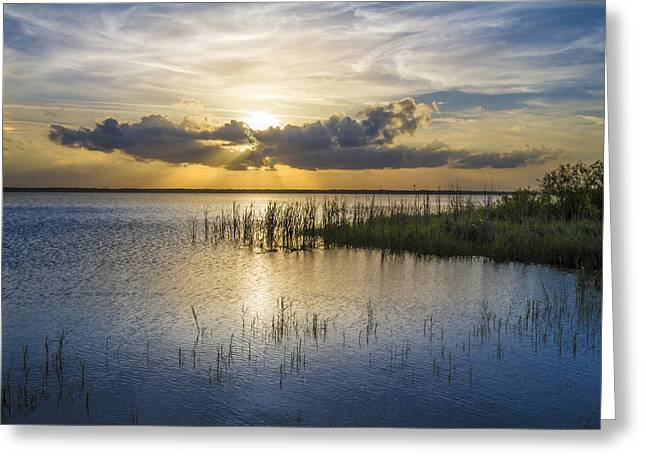 Ocean Landscape Greeting Cards - Rays Over the Marsh Greeting Card by Debra and Dave Vanderlaan
