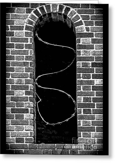 Rectangles Greeting Cards - Razor Wire Window Greeting Card by James Aiken