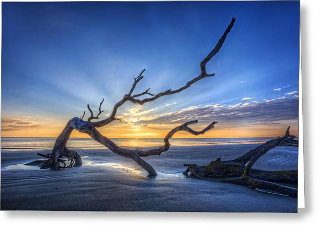 On The Beach Greeting Cards - Reach into Dawn Greeting Card by Debra and Dave Vanderlaan