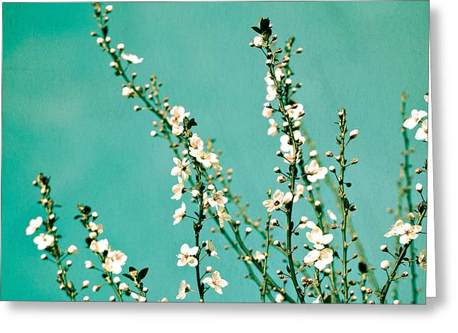 Cherries Greeting Cards - Reach Greeting Card by Melanie Alexandra Price