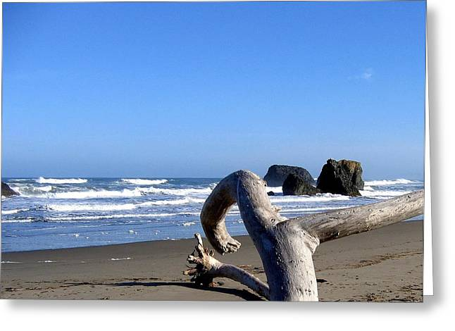 Reach Greeting Cards - Reaching Back To The Sea Greeting Card by Will Borden