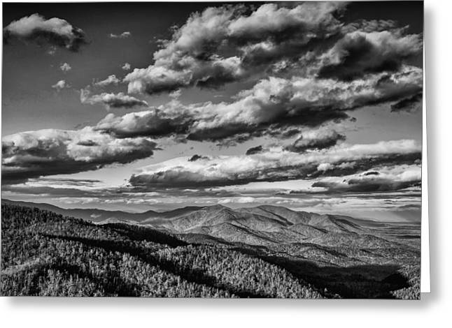 ist Photographs Greeting Cards - Reaching for the Light-bw Greeting Card by Joye Ardyn Durham