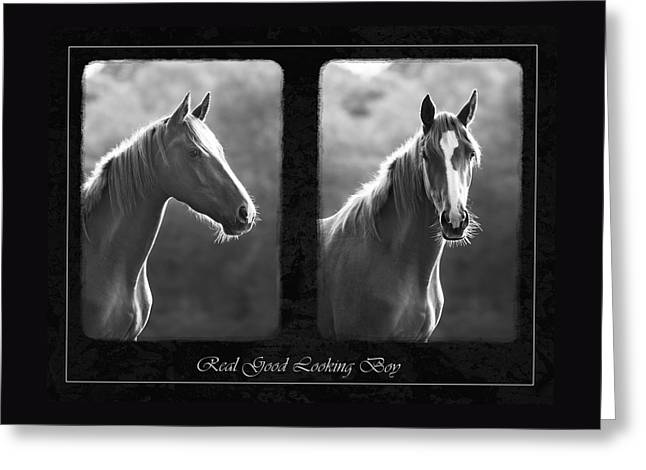 Mchugh Greeting Cards - Real Good Looking Boy Greeting Card by Malc McHugh