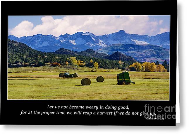Christian Bale Greeting Cards - Reap a Harvest Greeting Card by Priscilla Burgers