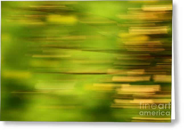Impressionist Photography Greeting Cards - Rectangulism - s01a Greeting Card by Variance Collections