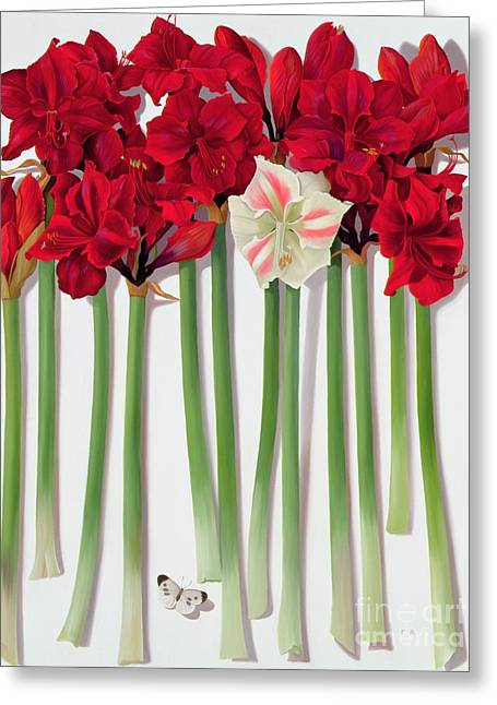 Roots Paintings Greeting Cards - Red Amaryllis with Butterfly Greeting Card by Lizzie Riches