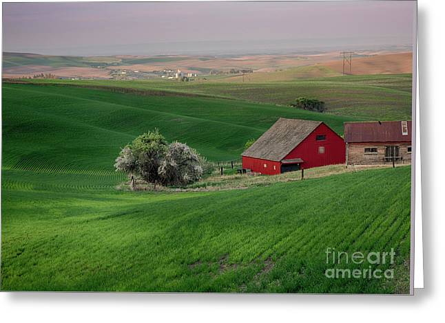 Red And Green Greeting Card by Idaho Scenic Images Linda Lantzy