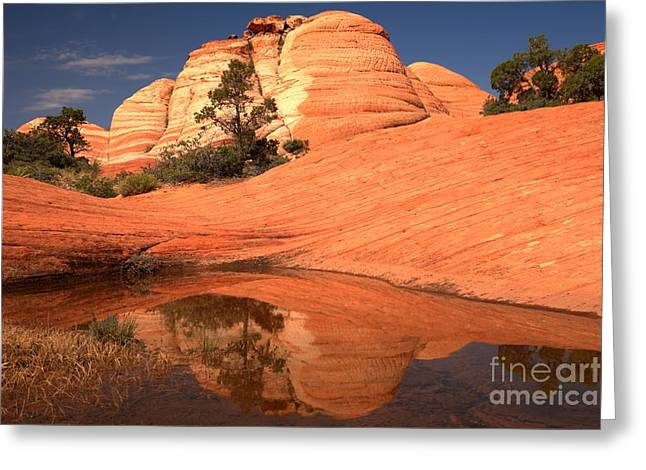 Southern Utah Greeting Cards - Red And White Reflections In Blue Greeting Card by Adam Jewell