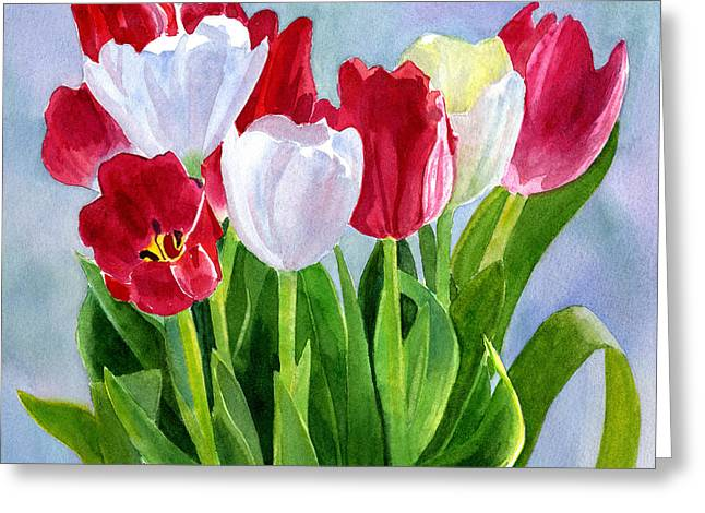 White Tulip Greeting Cards - Red and White Tulip Bouquet Greeting Card by Sharon Freeman