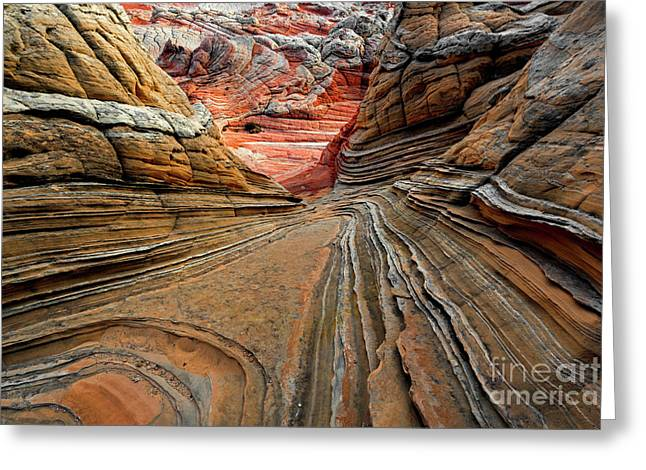Red Around The Bend Greeting Card by Mike Dawson