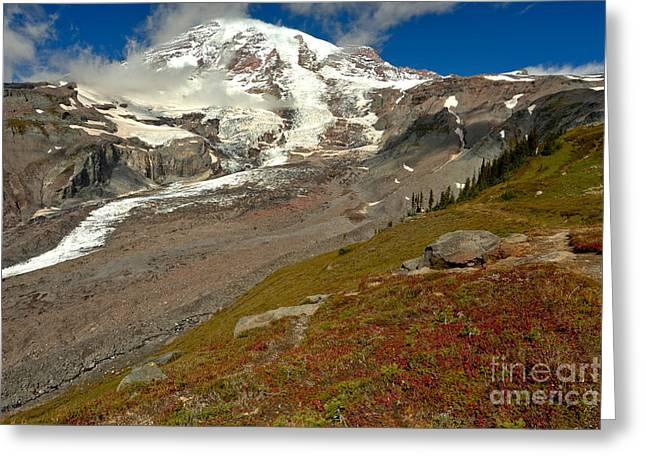 Red At The Treeline Greeting Card by Adam Jewell