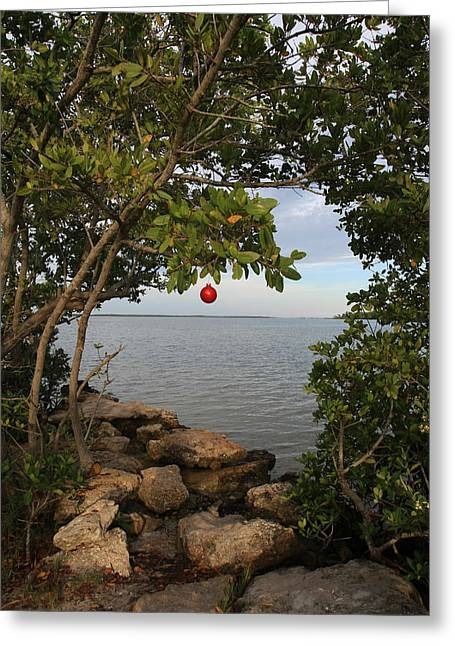 Christmas Greeting Photographs Greeting Cards - Red Ball Series Number Two Greeting Card by Lynn Berreitter