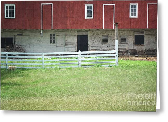 Red Barn Prints Greeting Cards - Red Barn Farm Animals Greeting Card by Andrea Hazel Ihlefeld